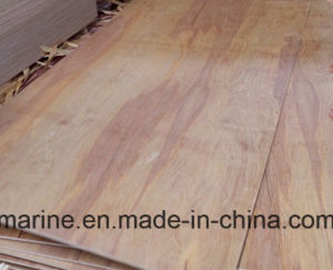 Packaging Grade Plywood Natural Birch Plywood for Boxes pictures & photos
