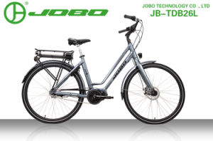 Green Enegery MID-Motor 700cc City Lady Bike pictures & photos