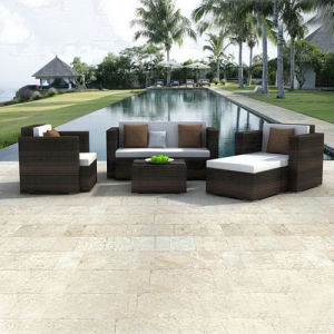 Garden Furniture Garden Sofa Set pictures & photos