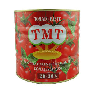 Hot Sell Canned Tomato Paste with Low Prices for Turkey pictures & photos