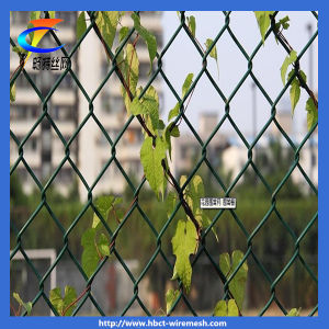 High Quality Manufacturer Chain Link Fencing pictures & photos