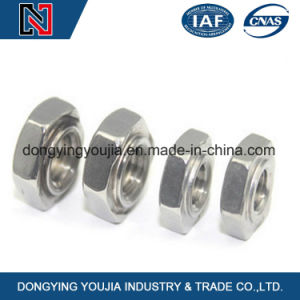 Factory Cheap Price Stainless Steel Hexagonal Nuts pictures & photos