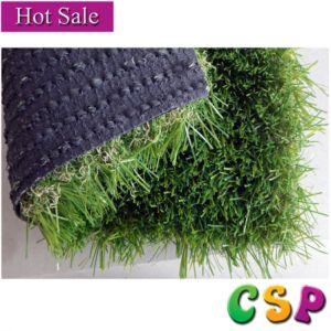 Csp004-1 Garden Landscaping Artificial Grass for Garden pictures & photos
