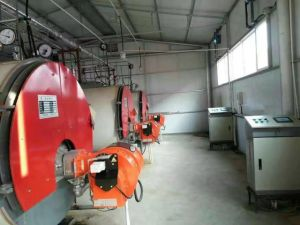 Wns Oil Fired Steam Boiler pictures & photos