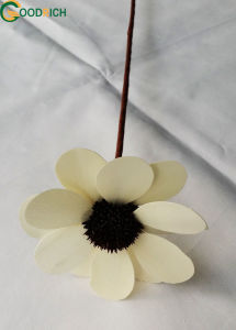 New Design Wooden Flower and Plant Various in Many Colours pictures & photos
