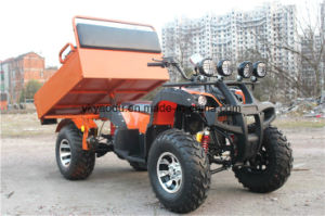 150cc/200cc Newest Gy6 Engine Farm ATV/ Farm UTV with Reverse Gear Hot Sale pictures & photos