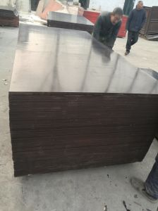 Good Quality Building Materials Usded for Shuttering- Film Faced Plywood pictures & photos