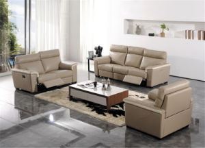 Living Room Sofa with Modern Genuine Leather Sofa Set (431) pictures & photos