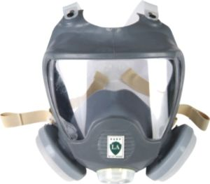 Full Face Dust Mask (9800B) pictures & photos