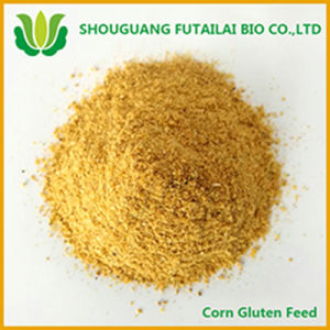 Corn Protein Feed for Animal Feed