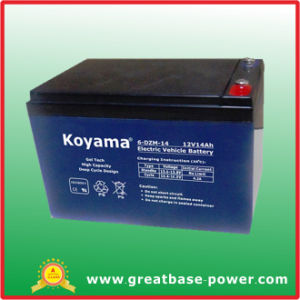 Top Quality E-Bike Storage Battery 6-Dzm-14 (14AH 12V) pictures & photos
