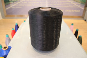 Nylon 6 Yarn with Twisted (300d-1260d)