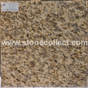 Granite Tiger Skin Yellow pictures & photos