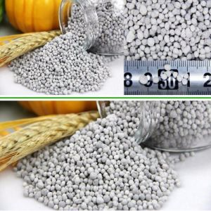 Water Soluble Fertilizer 20-20-20 NPK for Best Price pictures & photos