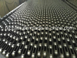Steel Conveyor Chain (P101.6, P152.4) for Palm Oil Industry pictures & photos