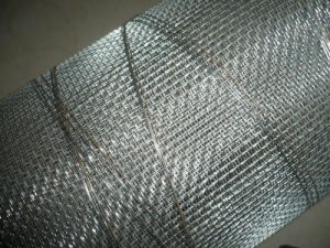 Stainless Steel Wire Mesh (XMS02) pictures & photos