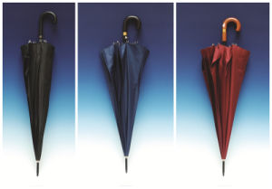 Auto Open Pure Color Pongee Straight Umbrella (SK-001) pictures & photos