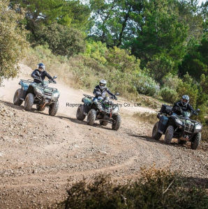 """1/4""""X25′ Optima S Winch Line Rope in ATV &UTV pictures & photos"""