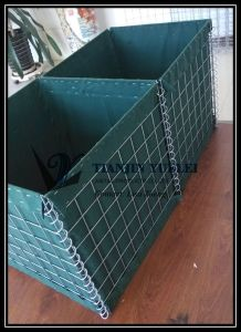 Hot DIP Galvanized Welded Wire Mesh Gabion Box pictures & photos