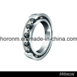 Stainless Steel Deep Groove Ball Bearing (W 6010)