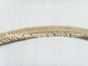 Hot Sale Cotton Braided Webbing Rope pictures & photos
