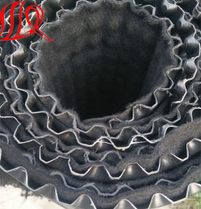 Thri-Dimension Dimple Drainage Sheet for Landfill Construction pictures & photos