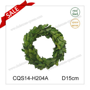 D15cm All Occasion Decorative Preserved Boxwood Wreath Wall Art pictures & photos