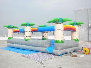 Inflatable Water Slides (B4072) pictures & photos