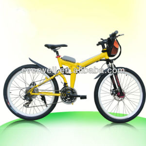 Folding Bike Made in China