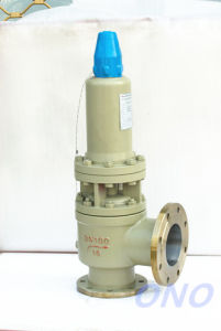 Spring Fall Lift Stainless Steel Safety Valve with Rediator pictures & photos