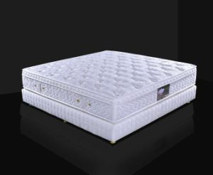 Pillow Topper Latex Foam Pocket Spring Mattress pictures & photos