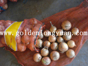 New Crop Fresh Yellow Onion (5 cm and up) pictures & photos