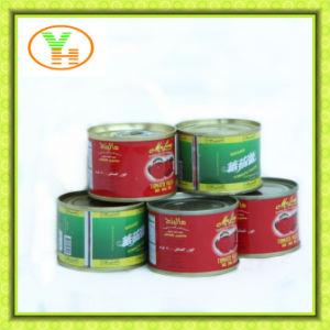 Hot Selling Canend Tomato Paste Sala pictures & photos