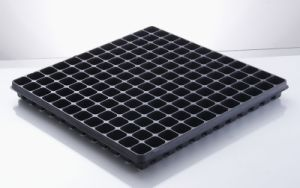 144 Cells Square Seedling Tray (A-144)