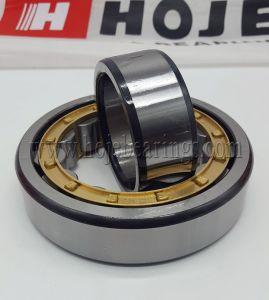 Hot Sale Cylindrical Roller Bearingnu1044, Nu244, Nu2244, Nu344