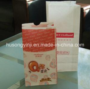 Paper Bag Printing Machine pictures & photos