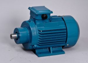 High Efficiency Tefc Three-Phase Grinding Motor pictures & photos