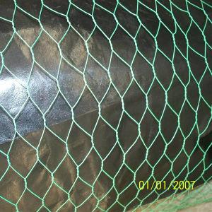 1/4′′, 3/4′′ Cheap Chicken Wire/Rabbit Wire Mesh/Galvanized Hexagonal Wire Mesh pictures & photos
