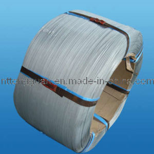 Hot Dipped Steel Wire Made by Tongguan pictures & photos
