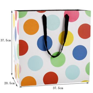 Colorful Gift Cardboard Packaging Bags Printing pictures & photos