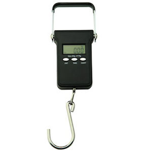Portable Digital Scale with Hook 40kg X 10g (PST06) pictures & photos