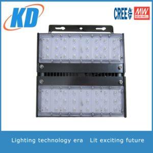 UL/cUL/PSE/Lm79/Lm80 LED Highbay Light and LED Flood Light