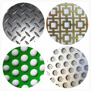Ss/Copper/Alumionum Perforated Sheet/Perforated Metal Sheet for Decoration & Building pictures & photos