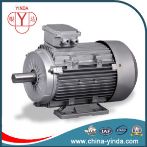 0.55kw~200kw Tefc Three Phase AC Motor pictures & photos