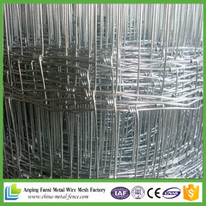 Hot DIP Galvanized Hinged Joint Horse Fencing pictures & photos