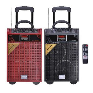 DVD Portable Trolley Wireless Stereo Bluetooth Speaker with FM pictures & photos