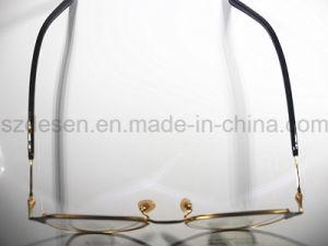 China Wholesale Custom Professional Beta Titanium Spectacles pictures & photos