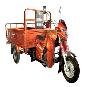 SKD Three Wheeler Motorcycle 150cc 200cc 250cc 300cc Farming Tricycle/ Motor Trike pictures & photos