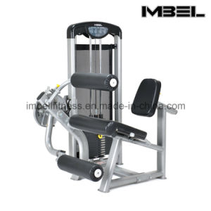 Commercial Fitness Equipment/Lf-Leg Curl/Leg Extension Dual Function 9207/Gym Equipment