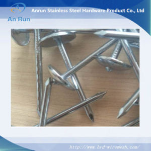 Galvanize Roofing Coil Nail 4mm*75mm with Ring Shank pictures & photos